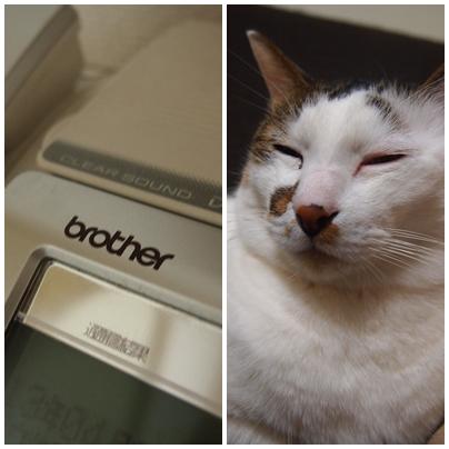 ブラザー工業のファックスと猫