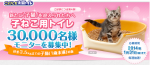 花王の子猫用ニャンとも清潔トイレでモニター募集しているようです^-^