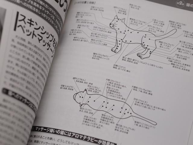 がくぶんペット介護士講座テキストの猫のツボ