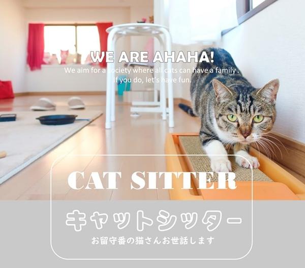 猫専門ペットシッター、キャットシッター川崎