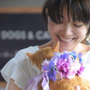 川崎の猫専門ペットシッター、キャットシッター矢沢苑子